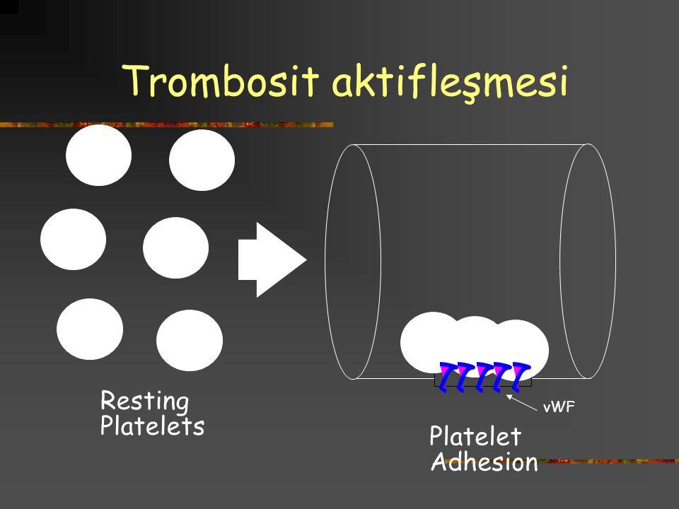 Trombosit aktifleşmesi
