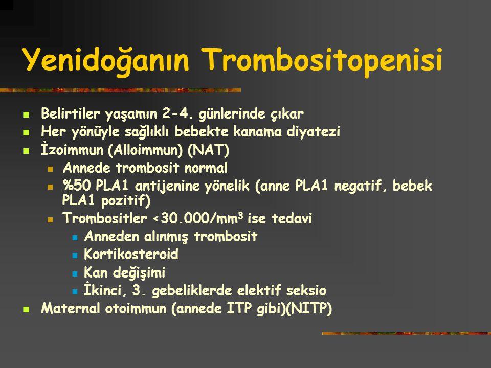 Yenidoğanın Trombositopenisi