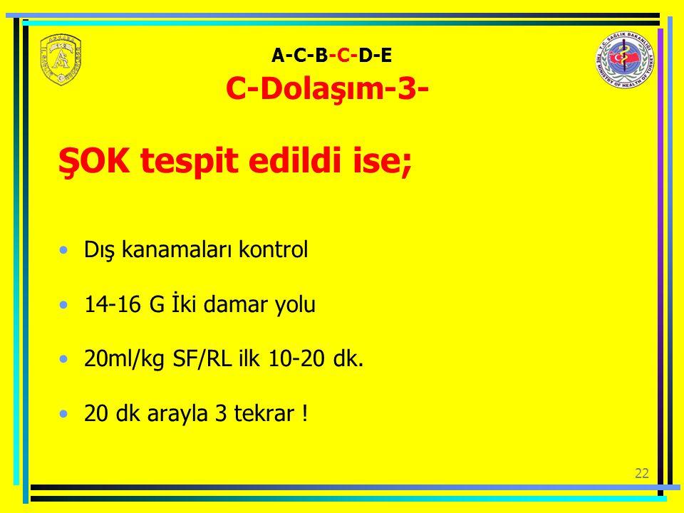A-C-B-C-D-E C-Dolaşım-3-