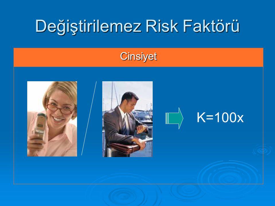 Değiştirilemez Risk Faktörü