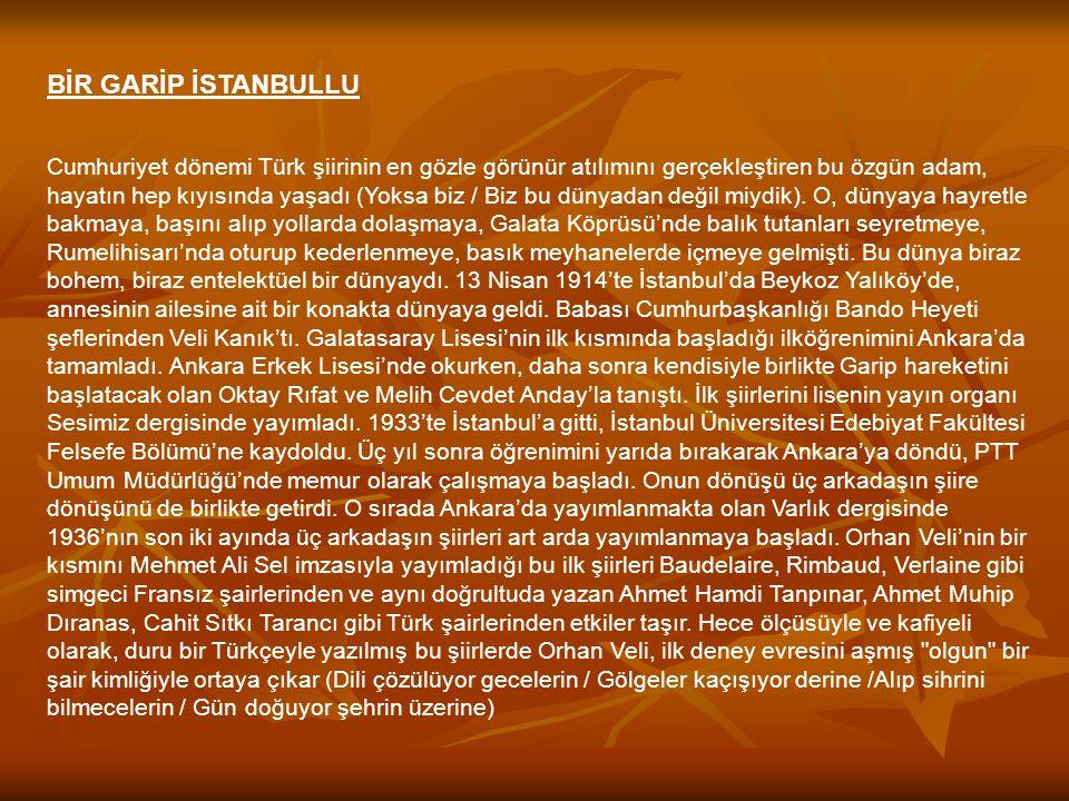 BİR GARİP İSTANBULLU