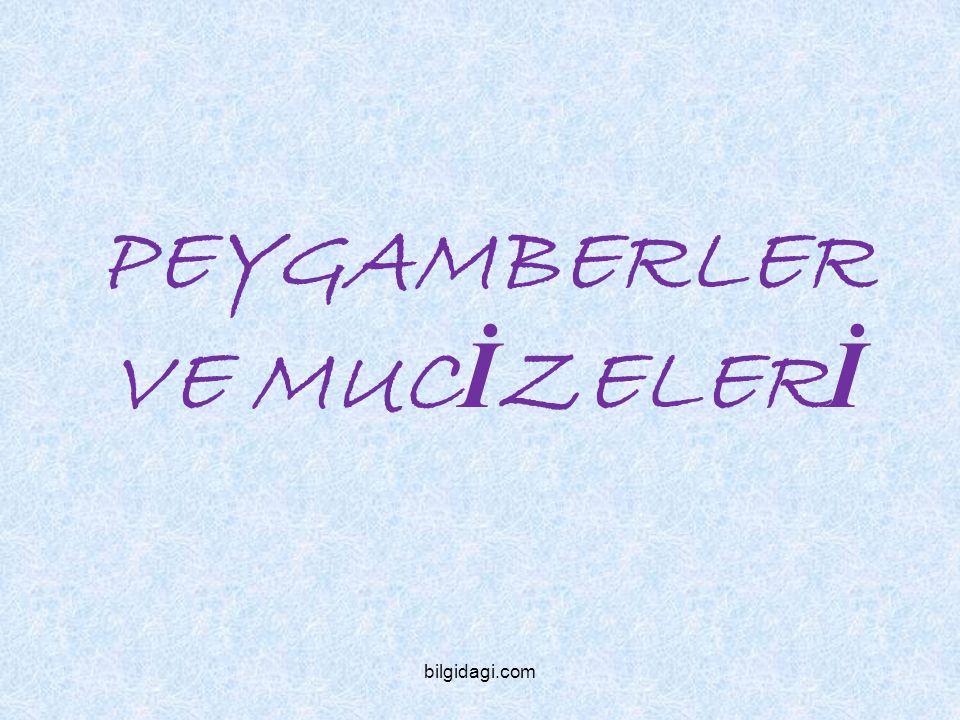PEYGAMBERLER VE MUCİZELERİ