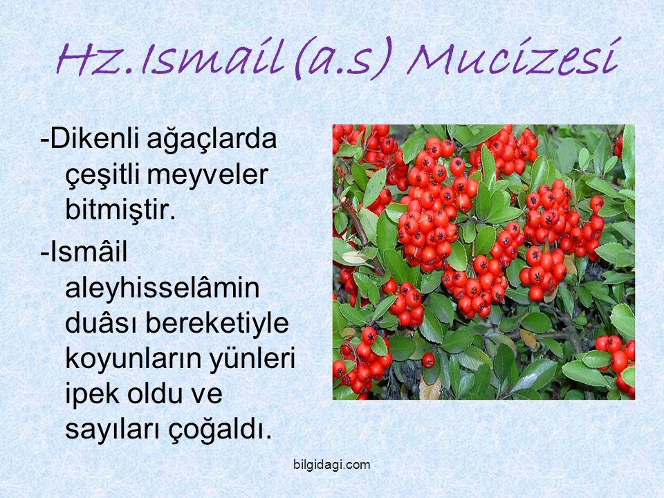 Hz.Ismail(a.s) Mucizesi