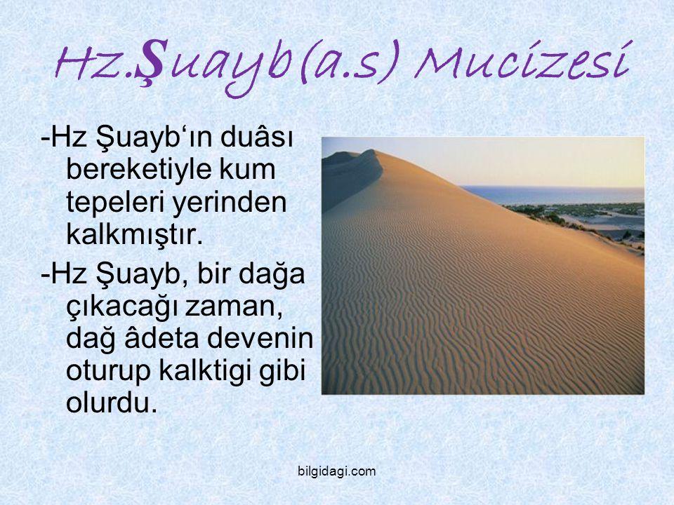 Hz.Şuayb(a.s) Mucizesi -Hz Şuayb'ın duâsı bereketiyle kum tepeleri yerinden kalkmıştır.