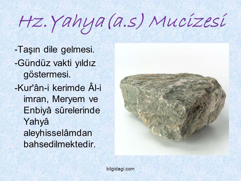 Hz.Yahya(a.s) Mucizesi -Taşın dile gelmesi.