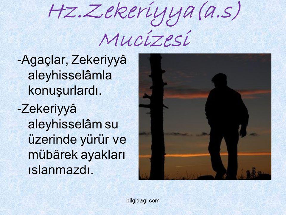 Hz.Zekeriyya(a.s) Mucizesi