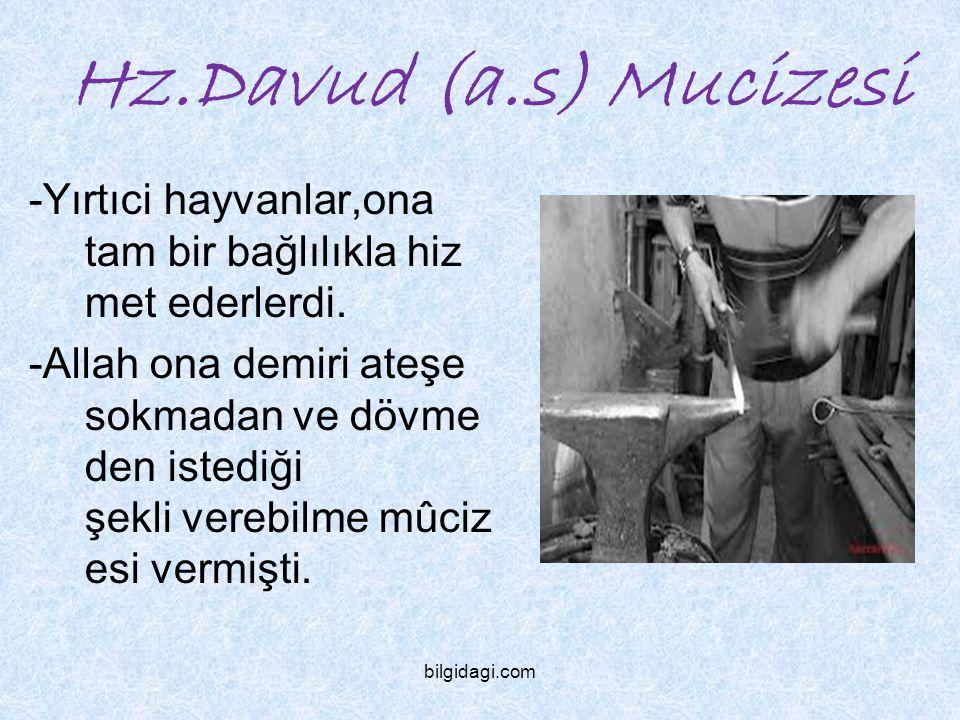 Hz.Davud (a.s) Mucizesi -Yırtıci hayvanlar,ona tam bir bağlılıkla hizmet ederlerdi.