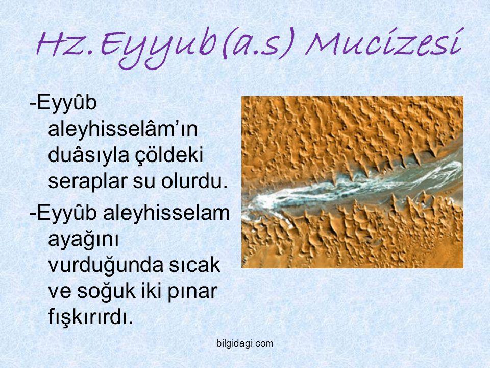 Hz.Eyyub(a.s) Mucizesi -Eyyûb aleyhisselâm'ın duâsıyla çöldeki seraplar su olurdu.