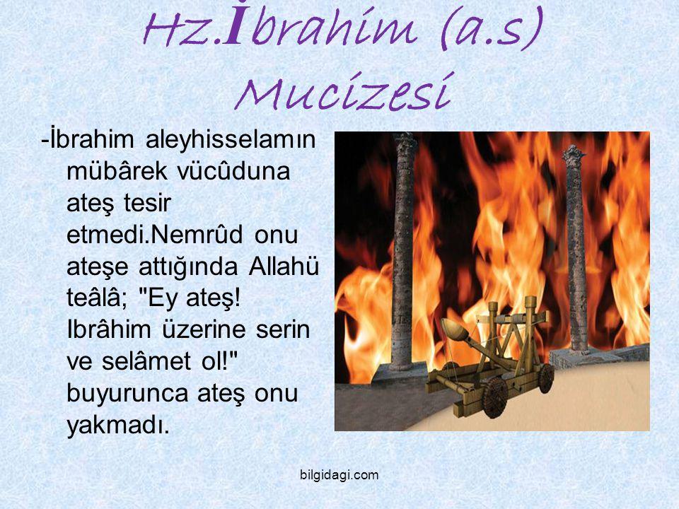 Hz.İbrahim (a.s) Mucizesi