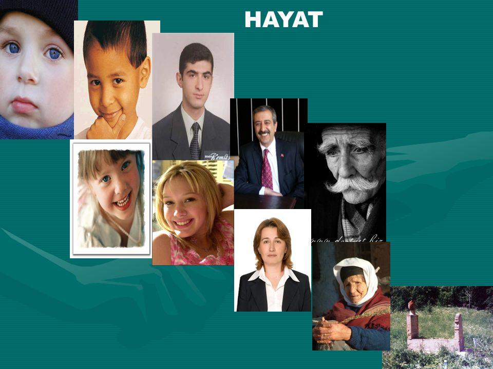 HAYAT