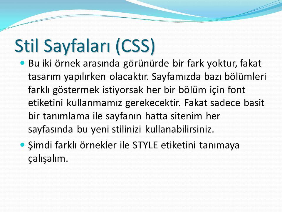 Stil Sayfaları (CSS)