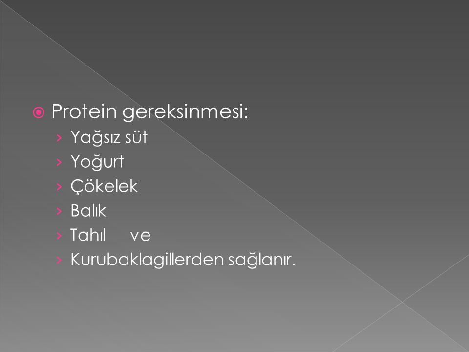 Protein gereksinmesi: