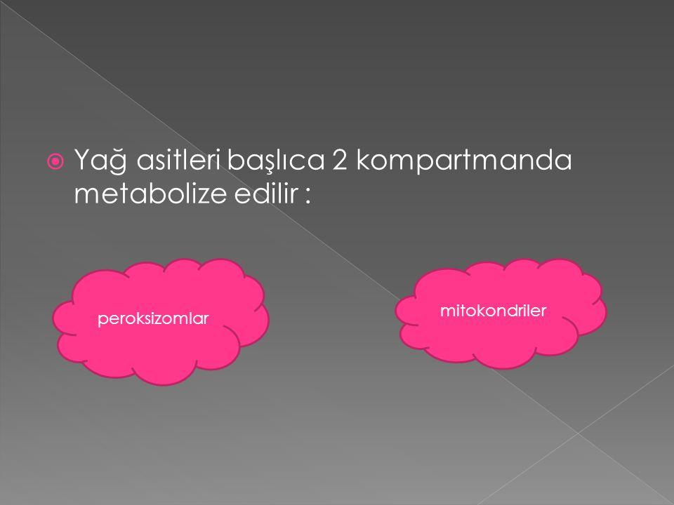 Yağ asitleri başlıca 2 kompartmanda metabolize edilir :