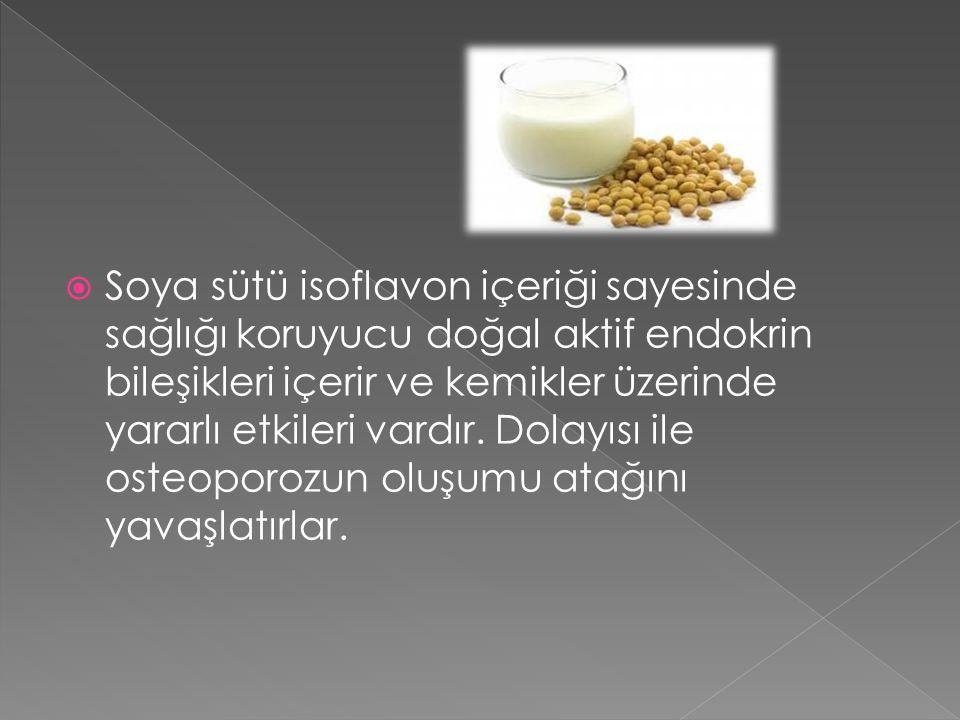Soya sütü isoflavon içeriği sayesinde sağlığı koruyucu doğal aktif endokrin bileşikleri içerir ve kemikler üzerinde yararlı etkileri vardır.
