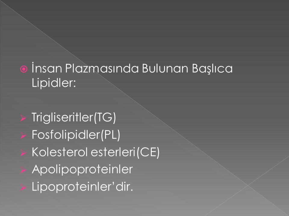 İnsan Plazmasında Bulunan Başlıca Lipidler: