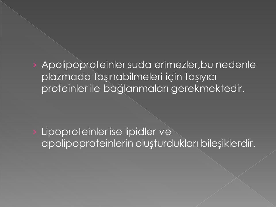 Apolipoproteinler suda erimezler,bu nedenle plazmada taşınabilmeleri için taşıyıcı proteinler ile bağlanmaları gerekmektedir.