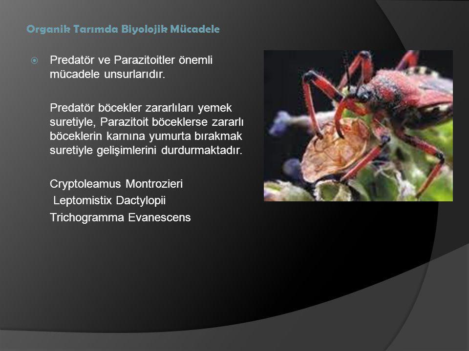 Organik Tarımda Biyolojik Mücadele