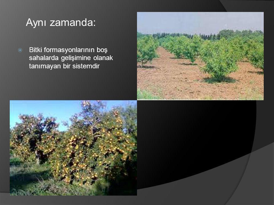 Aynı zamanda: Bitki formasyonlarının boş sahalarda gelişimine olanak tanımayan bir sistemdir