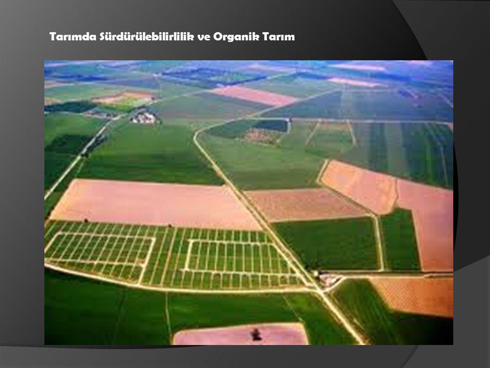 Tarımda Sürdürülebilirlilik ve Organik Tarım
