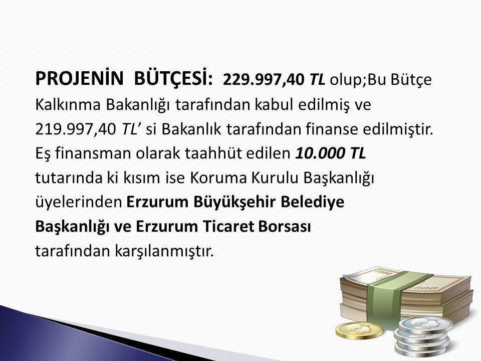 PROJENİN BÜTÇESİ: 229.997,40 TL olup;Bu Bütçe