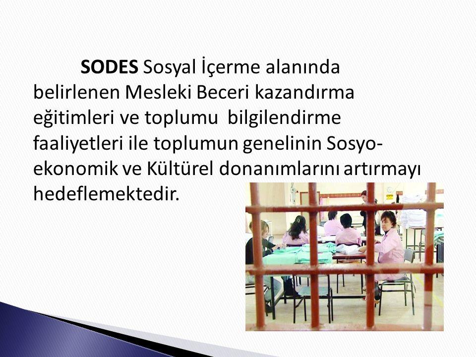SODES Sosyal İçerme alanında belirlenen Mesleki Beceri kazandırma eğitimleri ve toplumu bilgilendirme faaliyetleri ile toplumun genelinin Sosyo-ekonomik ve Kültürel donanımlarını artırmayı