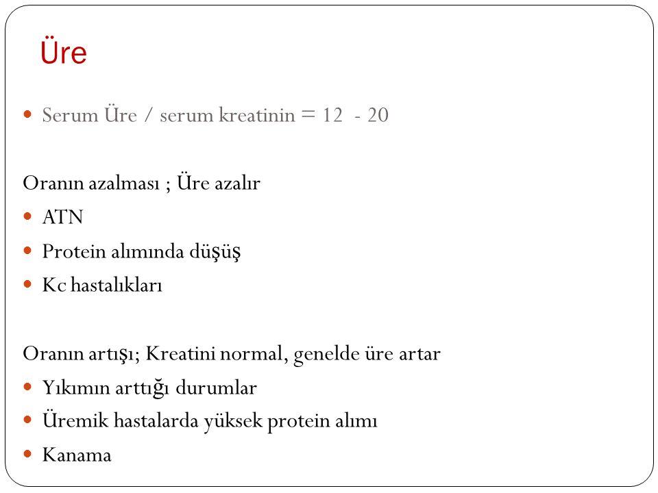 Üre Serum Üre / serum kreatinin = 12 - 20 Oranın azalması ; Üre azalır