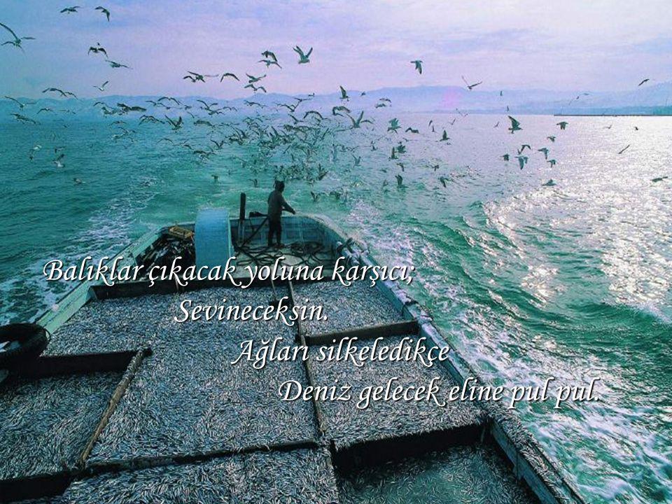 Balıklar çıkacak yoluna karşıcı; Sevineceksin