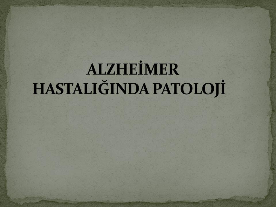 ALZHEİMER HASTALIĞINDA PATOLOJİ
