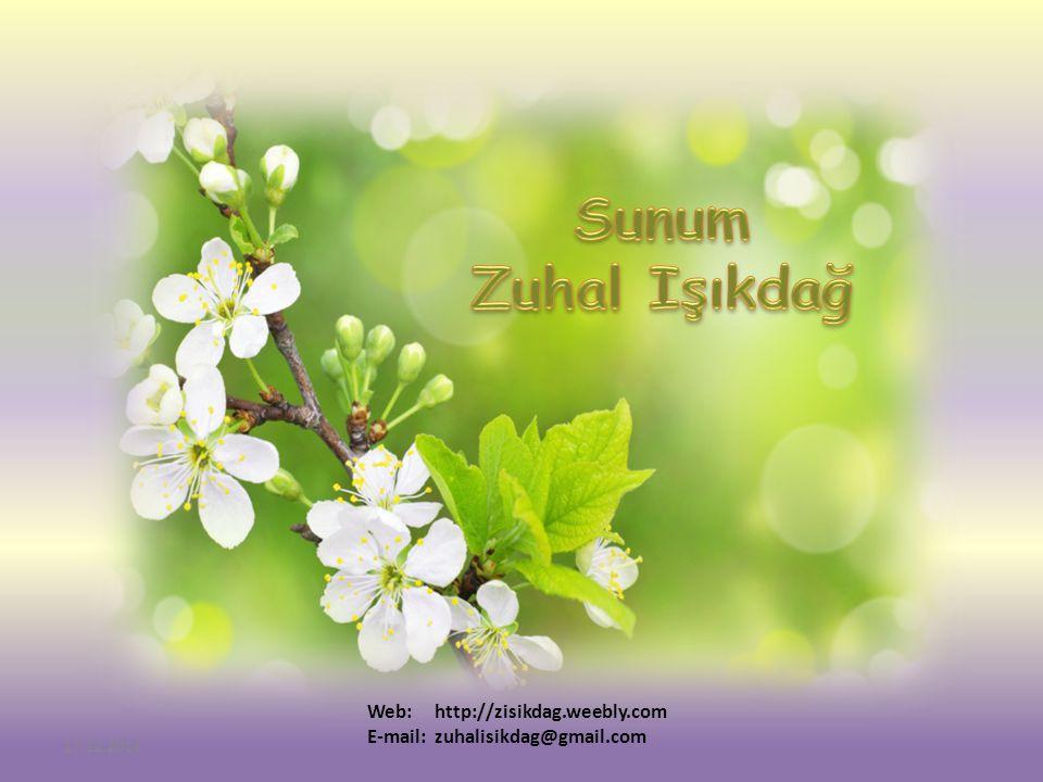 Sunum Zuhal Işıkdağ Web: http://zisikdag.weebly.com