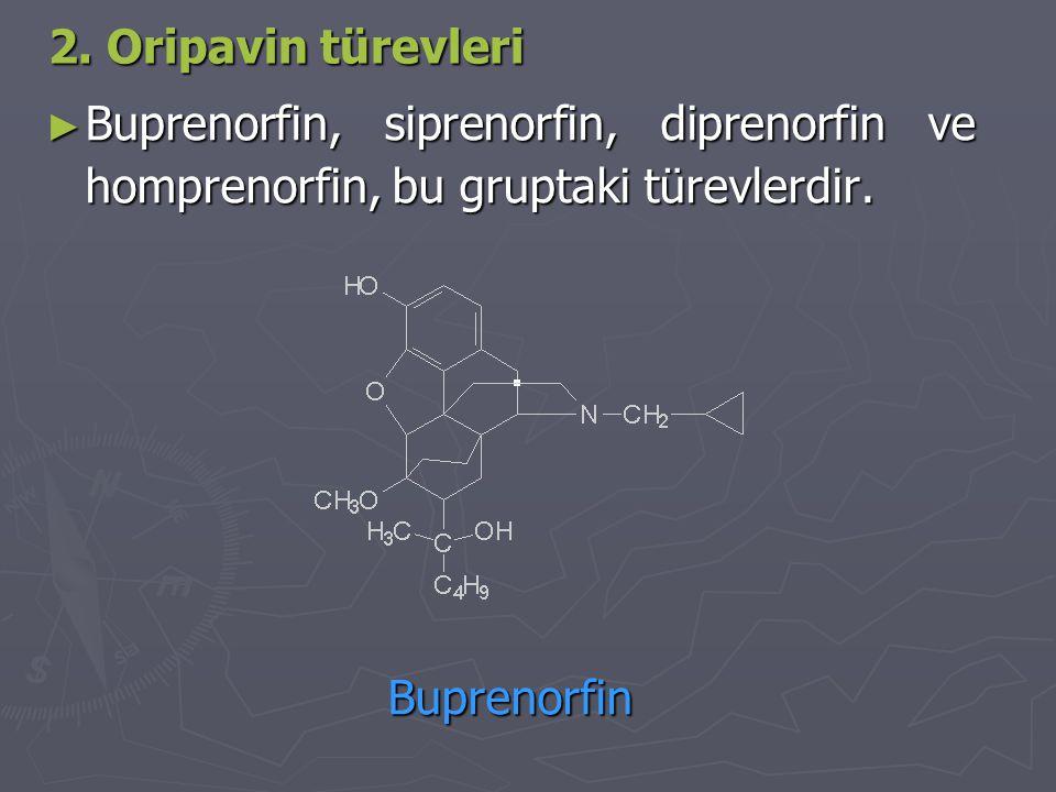 2. Oripavin türevleri Buprenorfin, siprenorfin, diprenorfin ve homprenorfin, bu gruptaki türevlerdir.