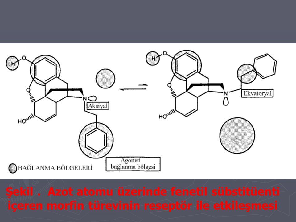 Şekil . Azot atomu üzerinde fenetil sübstitüenti içeren morfin türevinin reseptör ile etkileşmesi