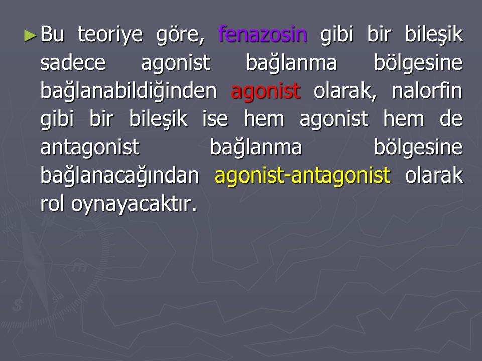 Bu teoriye göre, fenazosin gibi bir bileşik sadece agonist bağlanma bölgesine bağlanabildiğinden agonist olarak, nalorfin gibi bir bileşik ise hem agonist hem de antagonist bağlanma bölgesine bağlanacağından agonist-antagonist olarak rol oynayacaktır.