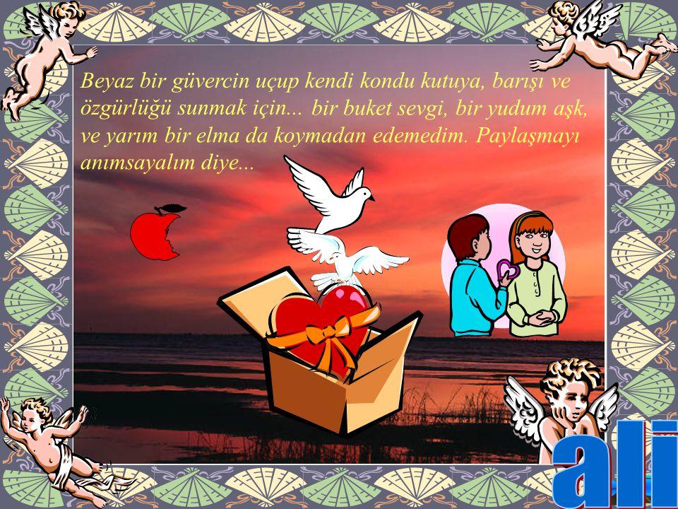 ali Beyaz bir güvercin uçup kendi kondu kutuya, barışı ve