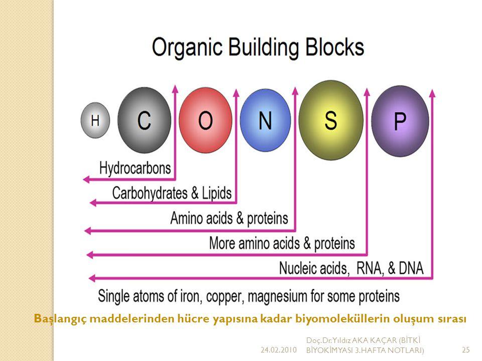 Başlangıç maddelerinden hücre yapısına kadar biyomoleküllerin oluşum sırası