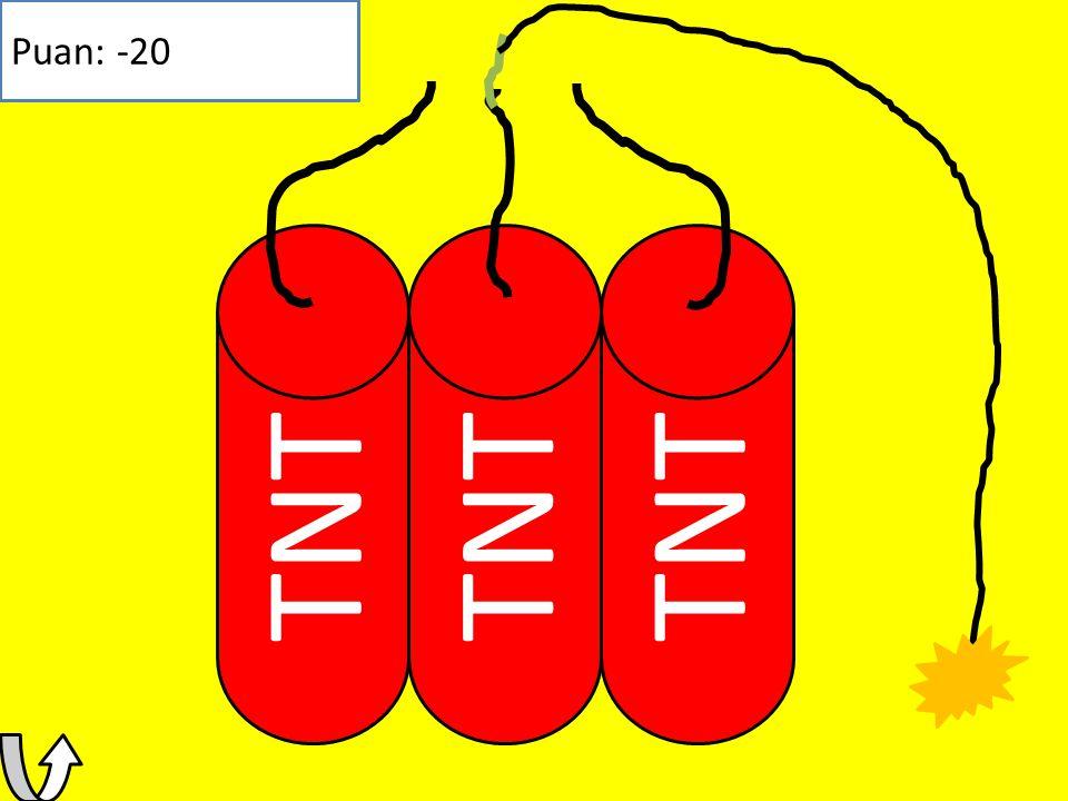 Puan: -20 TNT TNT TNT
