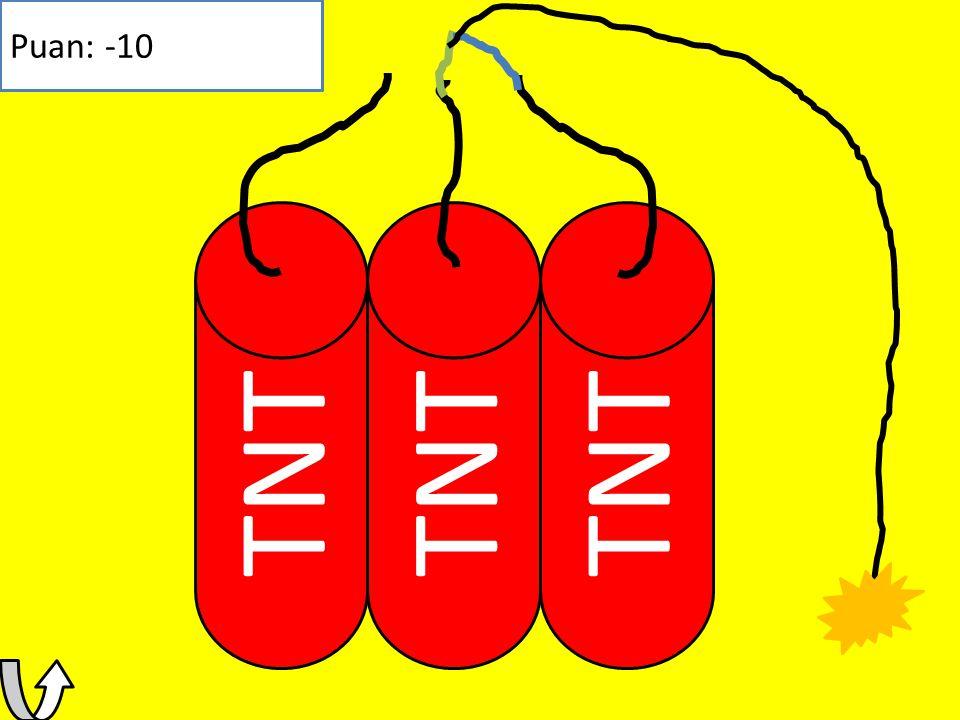 Puan: -10 TNT TNT TNT