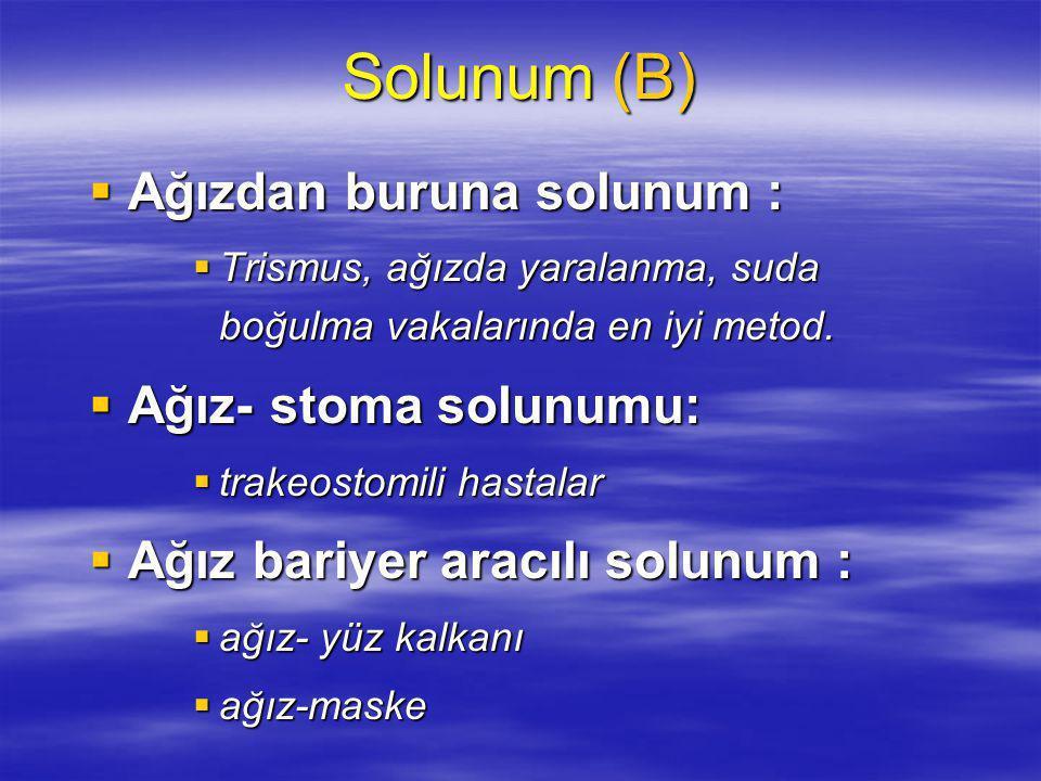 Solunum (B) Ağızdan buruna solunum : Ağız- stoma solunumu: