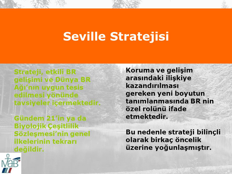 Seville Stratejisi