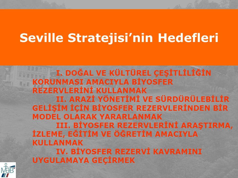 Seville Stratejisi'nin Hedefleri