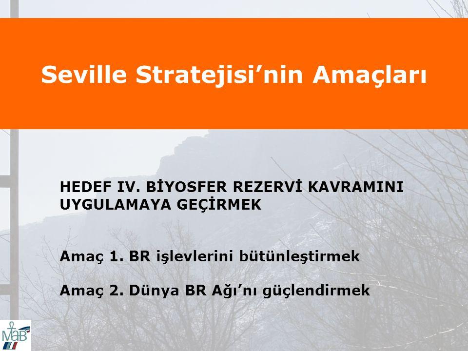 Seville Stratejisi'nin Amaçları