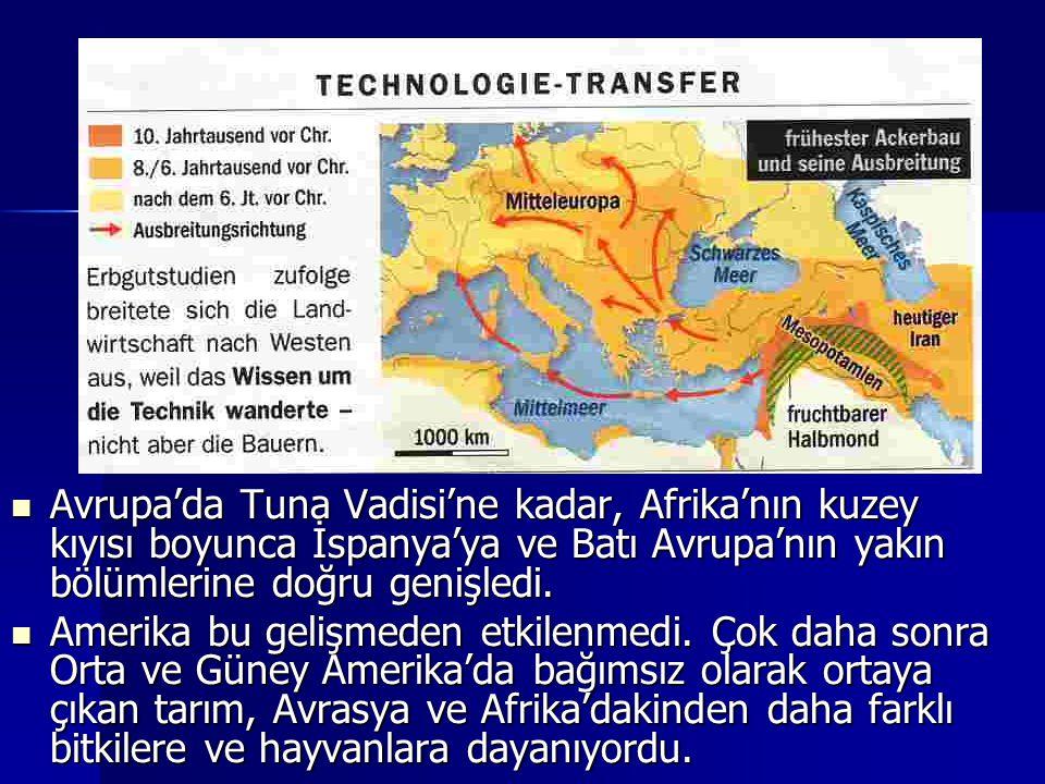 Avrupa'da Tuna Vadisi'ne kadar, Afrika'nın kuzey kıyısı boyunca İspanya'ya ve Batı Avrupa'nın yakın bölümlerine doğru genişledi.