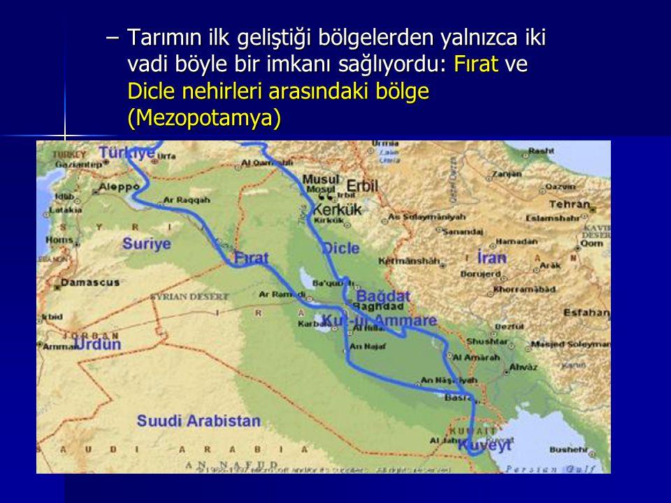 Tarımın ilk geliştiği bölgelerden yalnızca iki vadi böyle bir imkanı sağlıyordu: Fırat ve Dicle nehirleri arasındaki bölge (Mezopotamya)