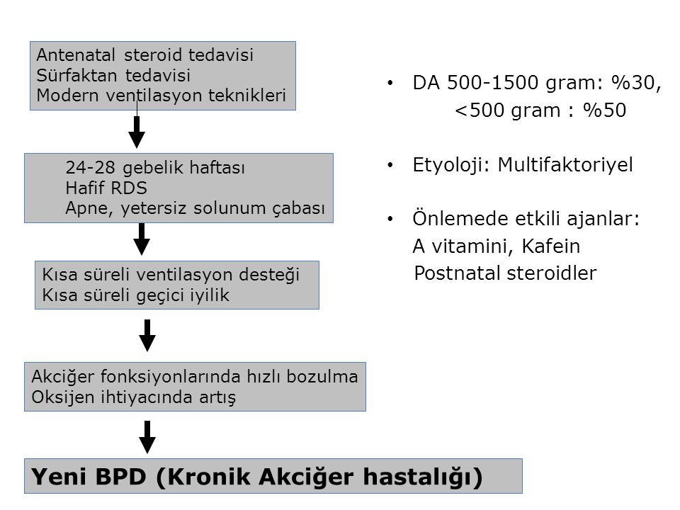 Yeni BPD (Kronik Akciğer hastalığı)