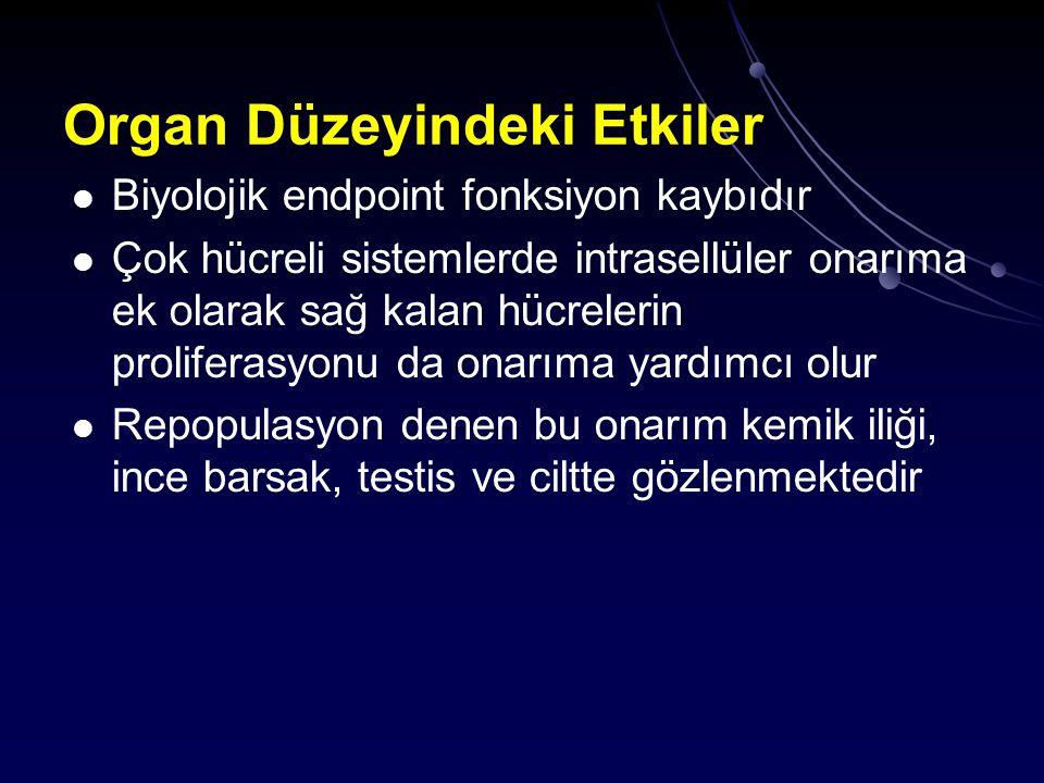 Organ Düzeyindeki Etkiler