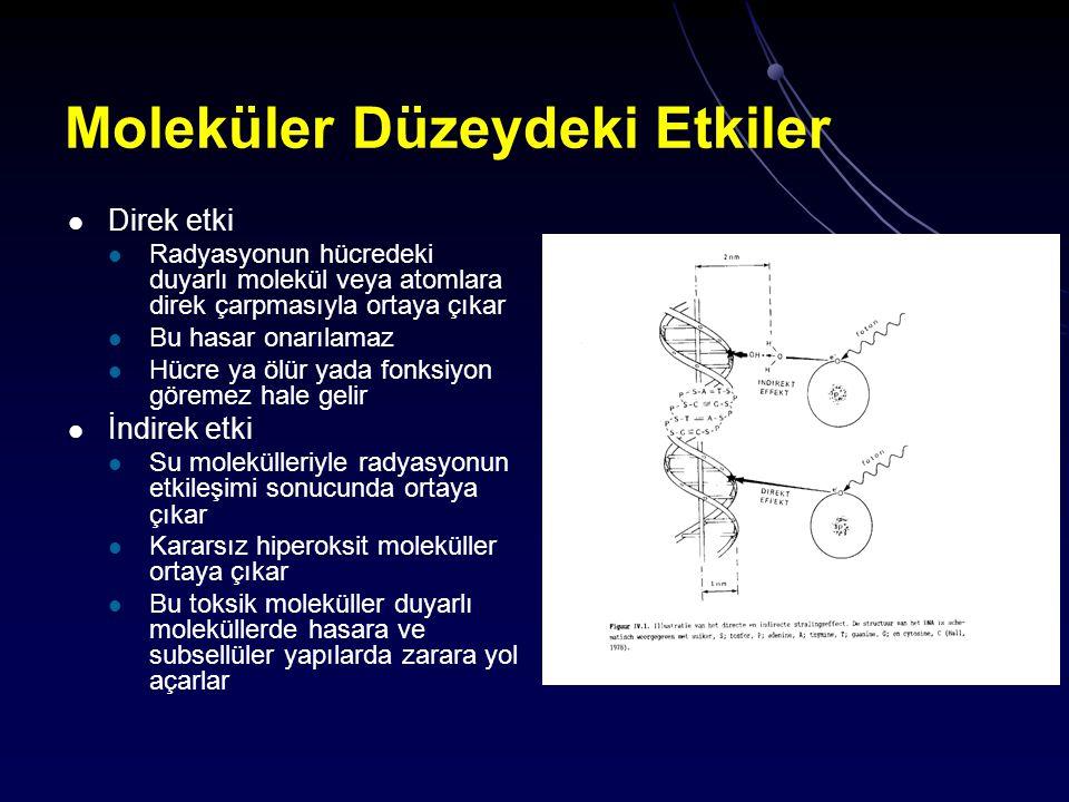 Moleküler Düzeydeki Etkiler