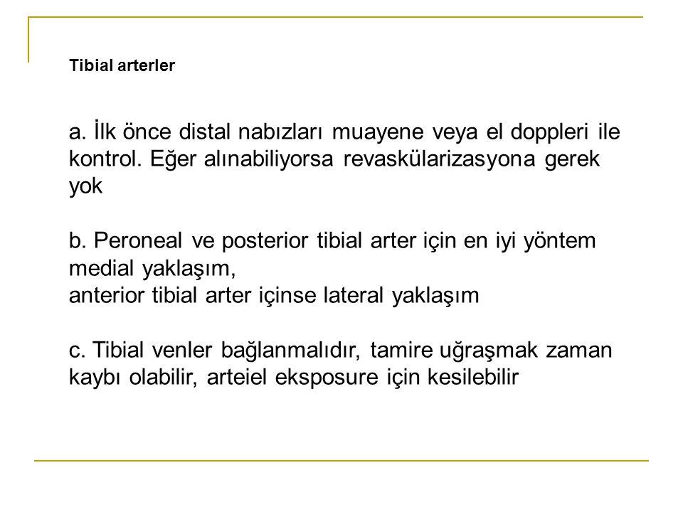 anterior tibial arter içinse lateral yaklaşım