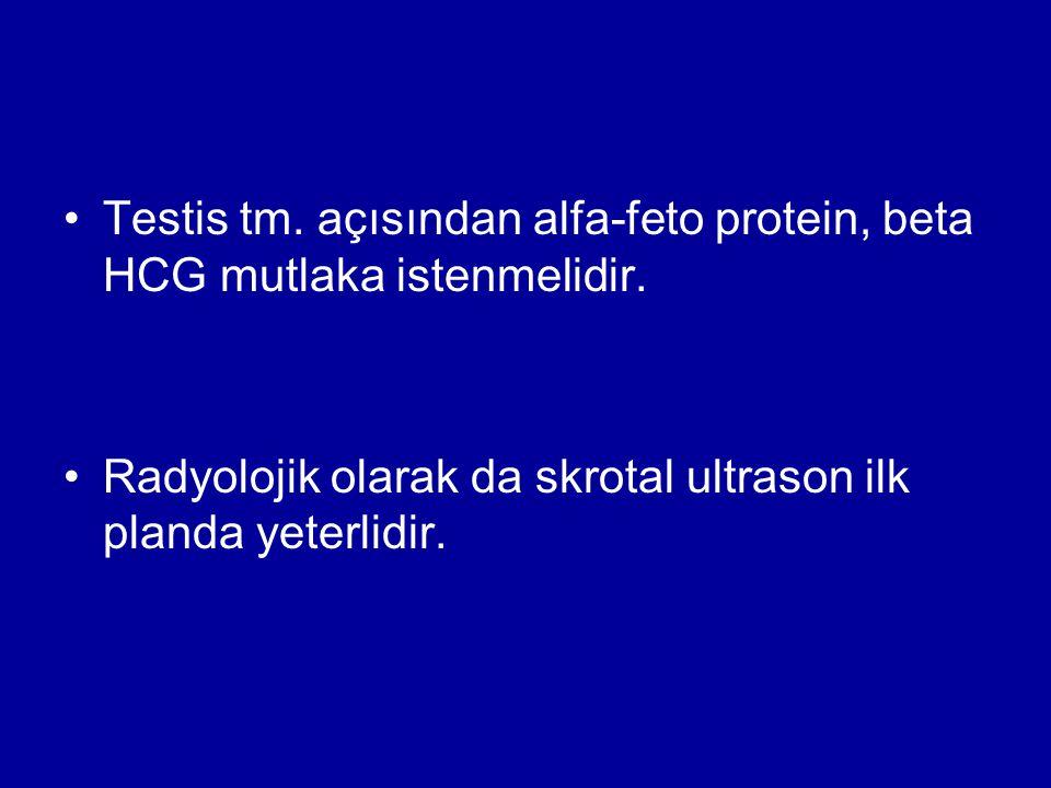 Testis tm. açısından alfa-feto protein, beta HCG mutlaka istenmelidir.