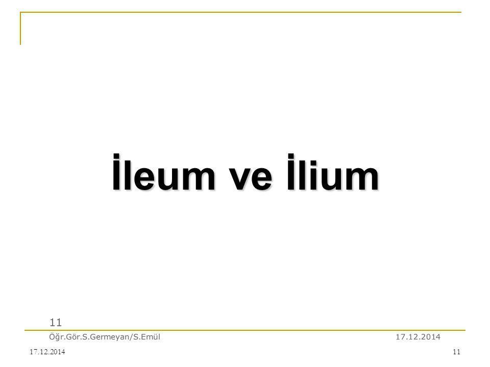 İleum ve İlium 11 Öğr.Gör.S.Germeyan/S.Emül 07.04.2017 07.04.2017
