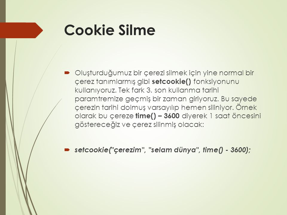 Cookie Silme