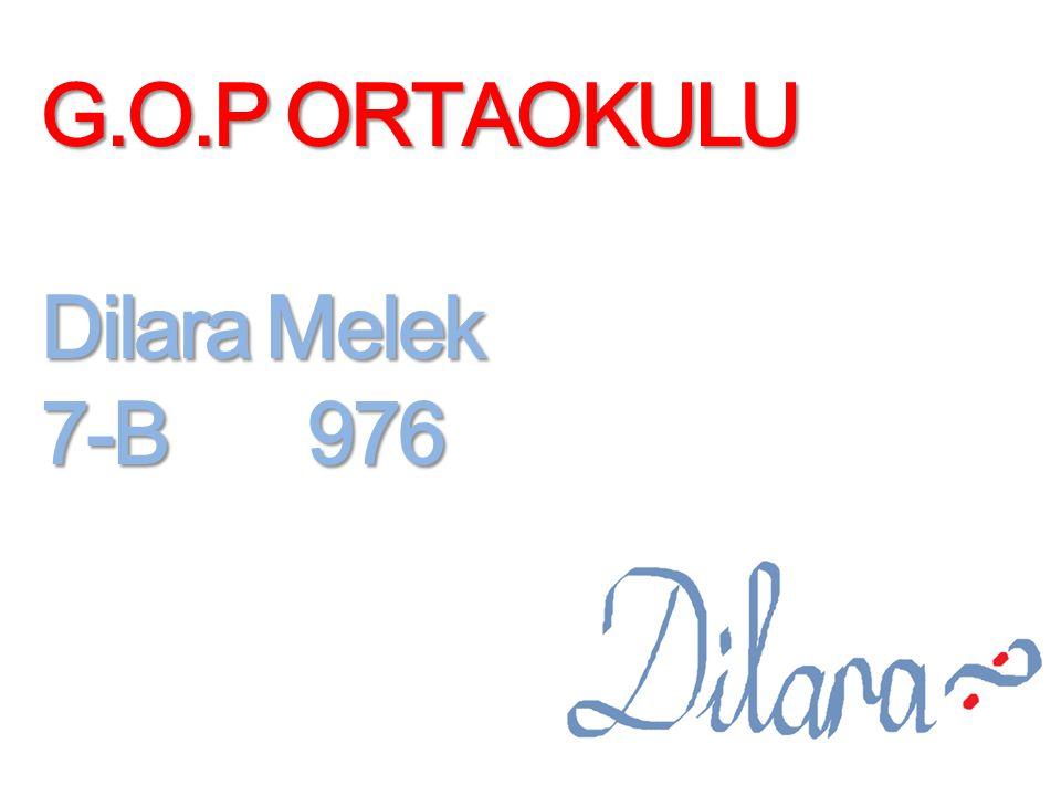 G.O.P ORTAOKULU Dilara Melek 7-B 976